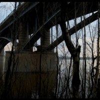 Мост :: Елена Сижук