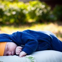 Хорошо спится  на природе! :: Елена Беляева