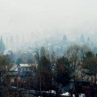 *** :: Вячеслав Завражнов