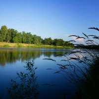 Берег реки :: Евгения Ермолаева