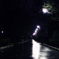 Вечер :: Настасья Матвеева