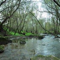 Река :: Алина Маримончик