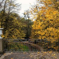 на мосту :: Александр Скрипник