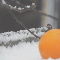 скоро Новый Год! :: Елизавета Харина