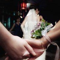 свадьба :: александр микулин