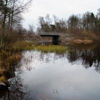 Старый мост :: Екатерина Тумовская