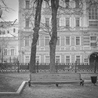 Гоголевский бульвар :: Сергей Францев