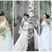 Красавица невеста :: валерий жеребчиков