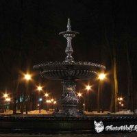 Ночной фонтан в Мариинском парке :: Sergey Klyuzko