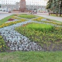 ковёр из цветов :: Алинка Яковлева