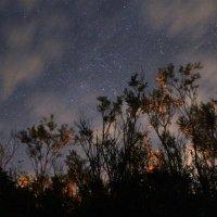 Ночное небо :: Олег Волков