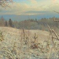 Зимняя сказка 2012 :: pavel b