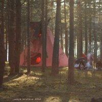 жилище лесных людей :: yasya krutova