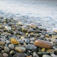 У тёплого моря... :: Лена L.