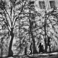 In the urban jungle. :: Artem Ryzhykov