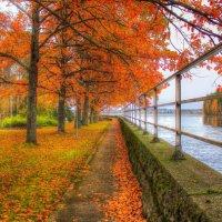 Осень :: Alena Ldinka