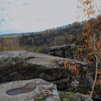 Осень :: Александр Скрипник
