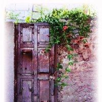 Дверь в лето :: Дмитрий Мартынюк