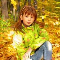 Золотая осень :: Александр Данильчев