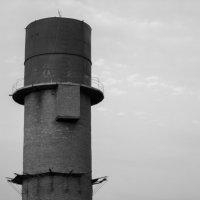 Башня джентельмен :: Сергей Игуменшев
