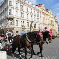 Прага :: Людмила Стадник