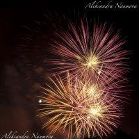 праздничные колючки :: AleksandraN Naumova