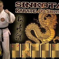 karate :: денис васюков