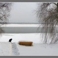 Фрагмент :: Павел Самарович