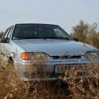 авто 3 :: Дамир Сагитов
