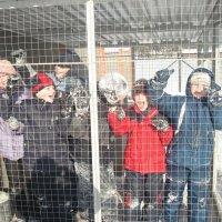 Детки в клетке :: Надежда Сергиенко