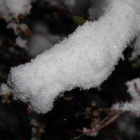 Снег :: Алинка Яковлева