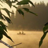 В тумане :: Владимир Лагажан