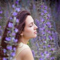 фиолетовое настроение :: Елена Беляева