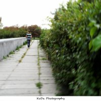 прогулка последними днями лета... :: Дарья Коротышева