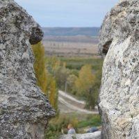 Крым Бельбекская долина :: Тамара Мадюдина
