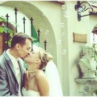 sweet kiss :: Светлана Лысцева