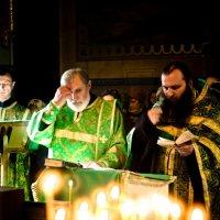 Молебен препообному Серафиму :: Александр Мирошниченко