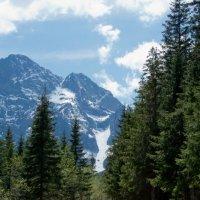 В горы :: Wiktor Kowalow