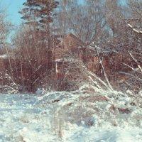 Зима :: Александр Барышев