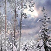 А снег идет... :: Сергей Михайлов