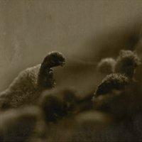 динозавры :: сергей крючков