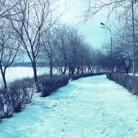 Мороз :: Денис Храменков