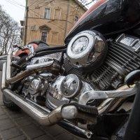 Блеск. :: Сергей Волков