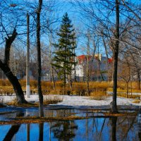 Весна :: Grishkov S.M.