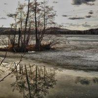 Весна на озере :: Светлана Игнатьева