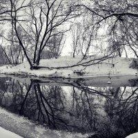 Тихая река :: Дмитрий Доронин