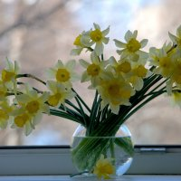 Весенний букет.. :: ФотоЛюбка *