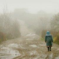 В соседнюю деревню :: Валерий Талашов
