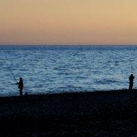 Жизнь рыбака - фото 1 :: Марина Шалкичёва