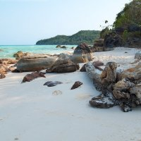 Вода, песок , камни и бревно...... :: Дмитрий Райко